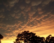 mammatus-clouds-1021052_1280